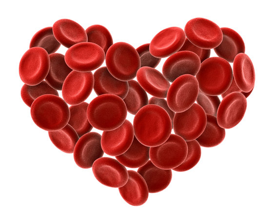 blood cells heart small