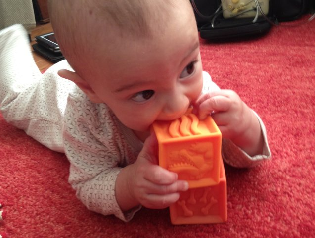 hudson-chewing-blocks
