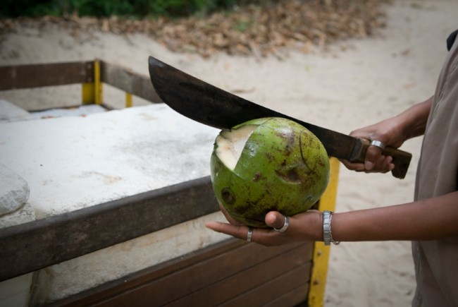 7 Ways NOT to Open a Coconut
