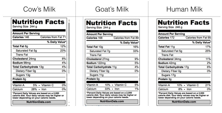 What is the difference between human milk and cow milk