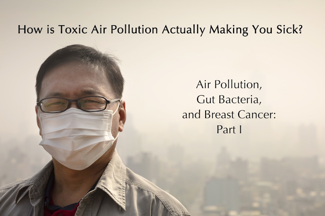 Toxic Air Part I